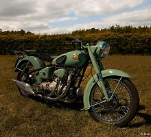 Sunbeam S8 Shafty by David J Knight