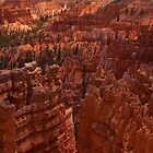 Bryce Canyon National Park, Utah by ejlinkphoto