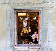 Toy Shop by Walter Quirtmair