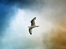 Flight by Sally Green
