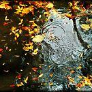 Rain by Laurent Hunziker