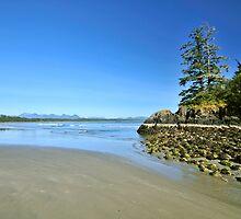 Pacific Rim National Park by riosaimages