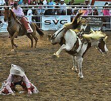 Cowboy-0 Horse-1 by DianaB