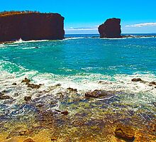 Sweetheart Rock, Lanai by Jessica Veltri