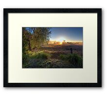 Tamborine • Queensland • Australia Framed Print