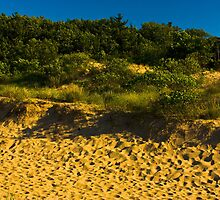 Sunset Dunes Oval Beach Saugatuck, Michigan by DunesLover