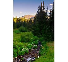 Creek Of The Evening Light Photographic Print