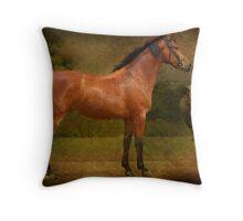 The  Race Horse. (TB X Polish Warmblood ) Throw Pillow