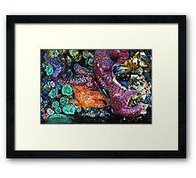 Sea Life in a Tidal Pool Framed Print
