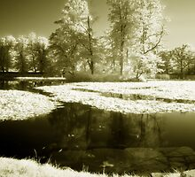 Castle Park Pond by Ethem Kelleci