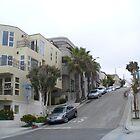 Street (Santa Monica) by Blue Skye Art  & Photography