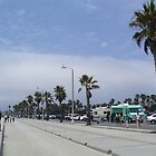 Venice Beach California by Blue Skye Art  & Photography