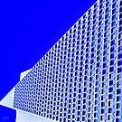 transamerica pyramid by Bruce  Dickson