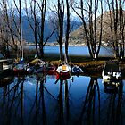 Patient boats - Queenstown, New Zealand by Melanie Travis