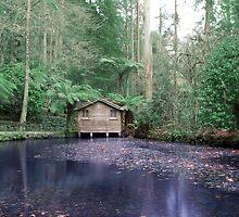 The Boathouse, Alfred Nicholas Gardens by Matt Jones