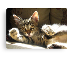 The Right Hook Canvas Print