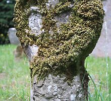 Moss on Medieval by Dave Godden