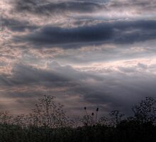 Sunset over Fields - Didcot, Oxfordshire, England by Mark Richards