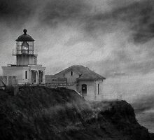Grey Matters of The Bay by Cupertino