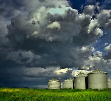 Grain Silos Under Stormy Skies  by Myron Watamaniuk