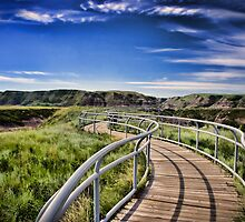 Path Over Badlands by Myron Watamaniuk