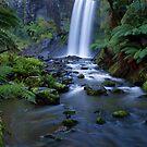 Hopetoun Falls by Kylie Moroney