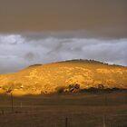 Afternoon Sunlight Under Storm - Monaro Highway by Kim  Lambert