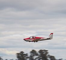 Sabre RVX-115 Low Pass by David Hunt