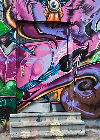Pink Door by Janet Schaefer