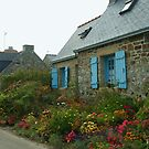 Flowered Cottages by marens