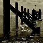 The Old Pier by Russ  Shepherd