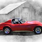 The Stingray by Keith Hawley