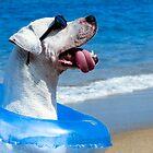 Chillin Pooch in Paradise by Jack Daniel Ciallella