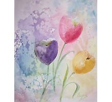 Some Tulips - Watercolor Painting Photographic Print