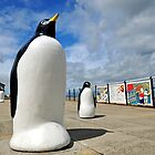 Redcar Penguins by robwhitehead
