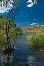 Banks of the 'Bidgee by Werner Padarin