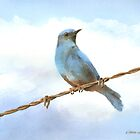 Bird On A Wire by arline wagner