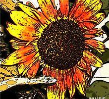 Fresco Sunflower by linmarie