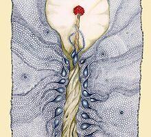 Aqua Lillium by Helena Wilsen - Saunders