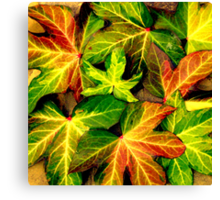 Autumn Leaves in Memories Canvas Print