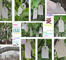 Yoko Ono's Wishing Tree - Washington D. C.  by Matsumoto