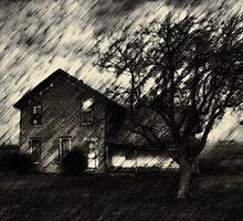 Where Nightmares Live by Kim  Calvert