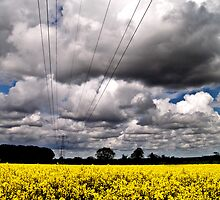 Rape Seed Field with Moody Sky by ArtforARMS
