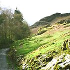Coniston Fells by Ian Lyall