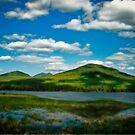 Western Maine by Alana Ranney