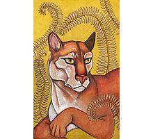 Goldeneye (The Cougar) Photographic Print