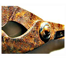 rusted blades Photographic Print