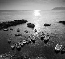 La baia di Riomaggiore by Davide Anastasia