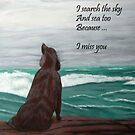 Miss You  by C J Lewis