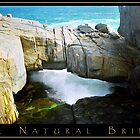 'The Natural Bridge' , Albany by Jodi Kneebone
